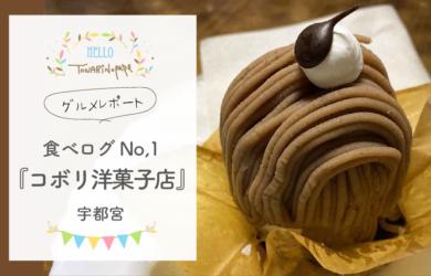 【宇都宮ケーキ】食べログケーキ部門で1位「コボリ洋菓子店」人気の理由は?口コミあり【グルメレポート】
